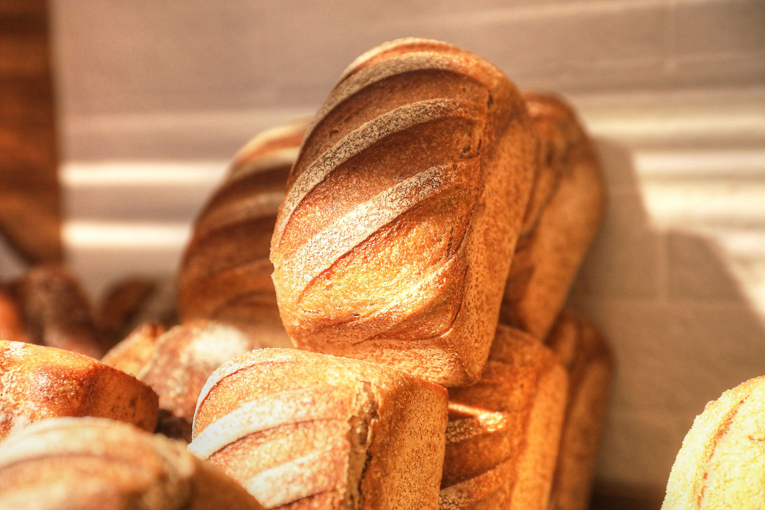 boulangerie_farineo16